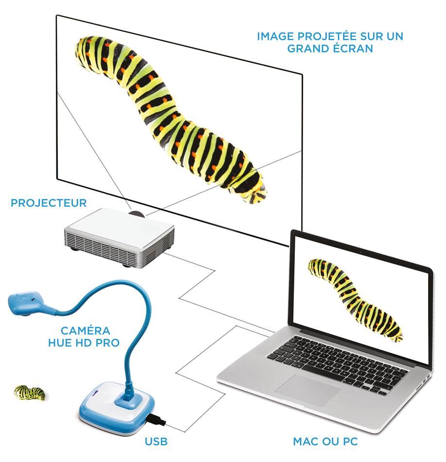 Pro visualiser FR caterpillar