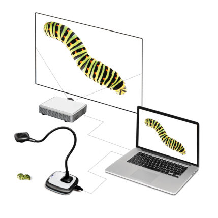 HUE HD Pro document camera filming a caterpillar for projection via a laptop